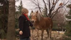 agi-i-konj.jpg